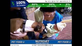 Funny dogs & NUTRIVET zdrava hrana za pse i mačke (6)