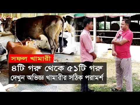 অভিজ্ঞ খামারীর সঠিক পরামর্শ | গরু পালন পদ্ধতি | How To Start Dairy Farm Business | Cow Farm
