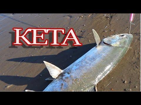 Диалог о рыбалке новые выпуски