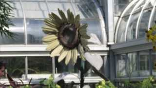 Washington  D.c. Botanical Garden 07/30/2013