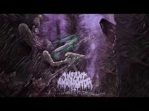Infant Annihilator - Motherless Miscarriage (lyric video)