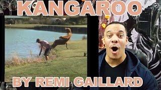 My ReView/ReAction to Kangaroo (Rémi GAILLARD)