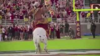 Florida State Football Highlights 2013