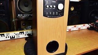 Genius SW-HF 5.1 5000 subwoofer - woofer - bass reflex speaker multichannel amplifier What's inside