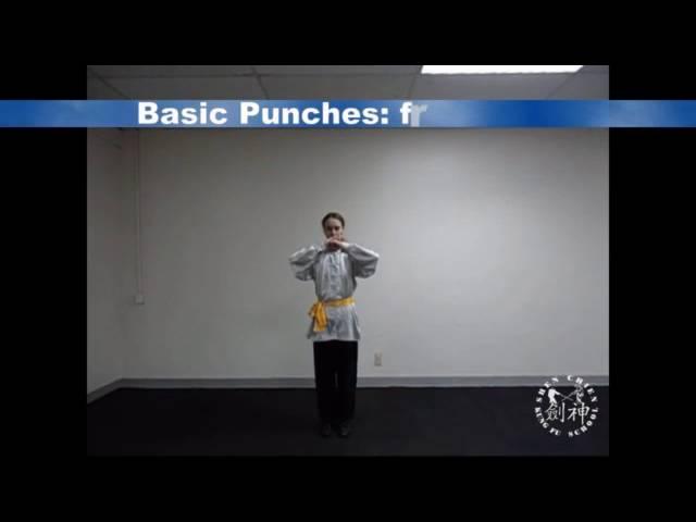 Basic Punches 基本拳法Mei hua quan 梅花拳