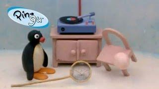 Pingu - Pingu helpt met broeden