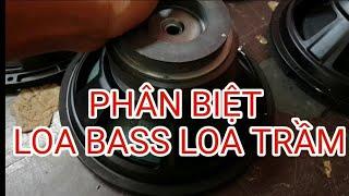 Cách phân biệt loa Bass và loa Sub