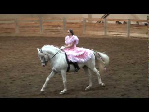 Romerito and Duende at the MSU Stallion Expo 2010 - Andalusian Exhibition.mp4