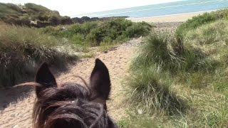 one woman and a horse riding along the south wexford coast part one