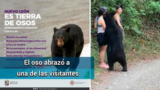 Oso sorprende a visitantes de Chipinque, en Nuevo León