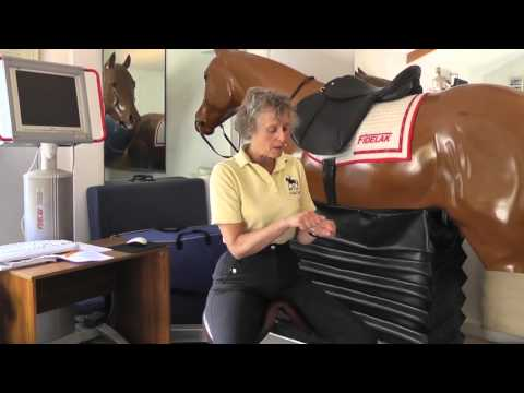 Rider Biomechanics by Mary Wanless - Plugging In