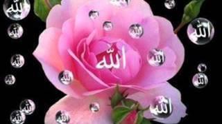 Beautiful Talawat On Islamic Wallpaper