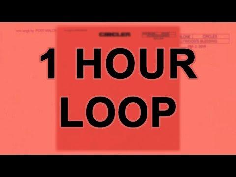 Post Malone - Circles ( 1 Hour Loop )