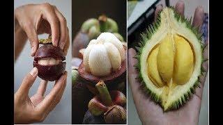 """8 Loại trái cây """"Tuyệt đối"""" KHÔNG ĂN vào BUỔI TỐI"""