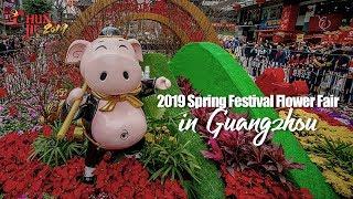 Live: 2019 Spring Festival Flower Fair in Guangzhou广州传统花市 史上人最多!