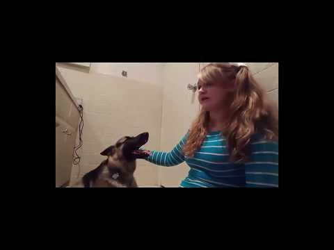 girl fucks dog story