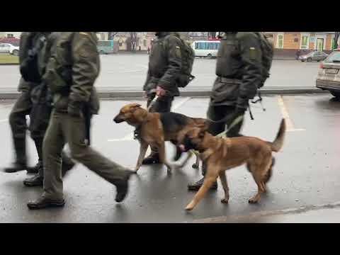 Два центральных района Кривого Рога будут патрулировать военнослужащие и полицейские, - ФОТО, ВИДЕО
