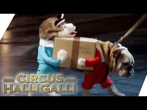 Aushalten: Nicht lachen (Tag Team Edition) Vol. 2 - TEIL 4   Circus Halligalli    ProSieben