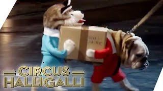 Aushalten: Nicht lachen (Tag Team Edition) Vol. 2 - TEIL 4 | Circus Halligalli  | ProSieben thumbnail