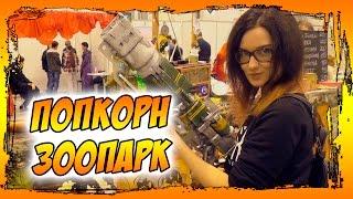 Кисимяка в Новосибирске - 'Попкорн', кормлю медведя и черные пельмени