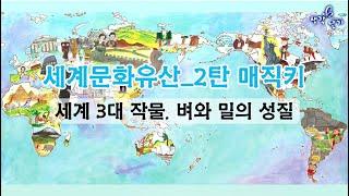 세계문화유산_2탄 매직키 세계 3대 작물, 벼와 밀의 …