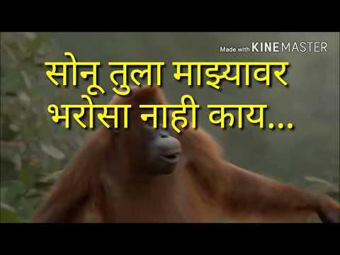 New Sonu Tula Mazya Var Bharosa Nahi Ka Monkey Funny Dance