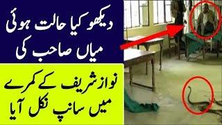 Snake Found In Nawaz Sharif's Cell | The Urdu Teacher
