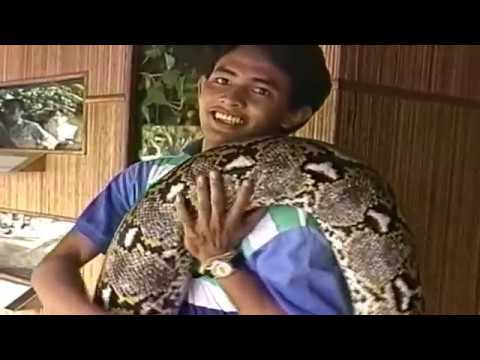 HAVE YOU EVER SEEN A 27 FEET LONG PYTHON?  MALAYSIA.