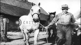 Ethnic And Seasonal Diversity In The United States; Dust Bowl Affects Farming. Hd Stock Footage