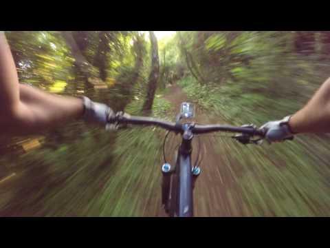 North Downs, Kent - Dave's Descent Mtb