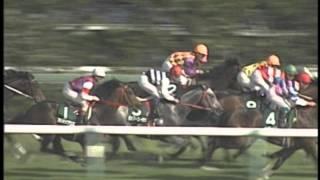 1994年4月16日 中山11R 第8回クリスタルカップ(GIII)