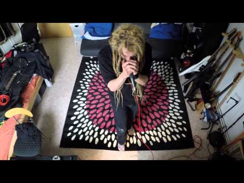 Insomnium - Ephemeral (Vocal Cover)