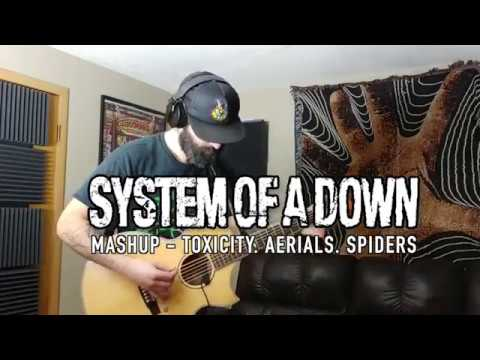 System Of A Down MashUp Toxicity Aerials Spiders acoustic  cover by Dustin Prinz