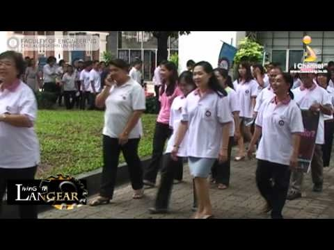Living in Larn Gear - Energy Saving Parade