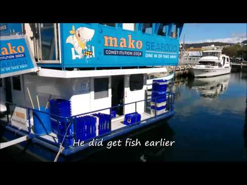 Constitution Dock Hobart, Hobart waterfront, seals, Mures, fish punts Hobart harbour