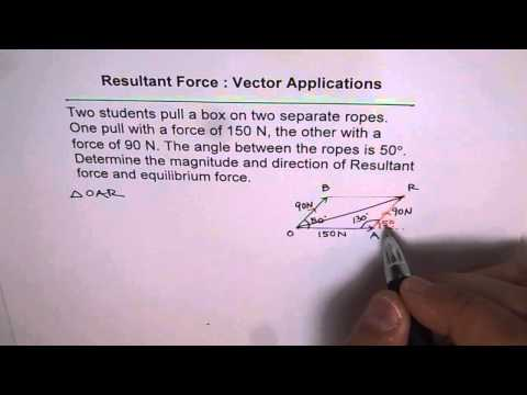 Resultant Vector Force and Equilibrium