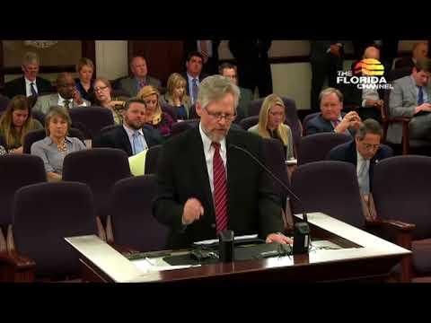 Ken Larsen Speaks To The Florida Senate