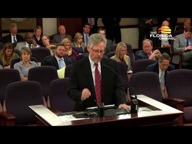 Ken Larsen Speaks To The Florida Senate