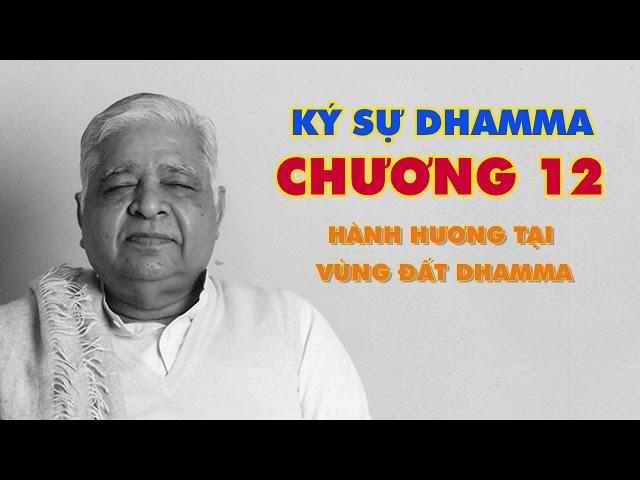 Ký Sự Dhamma - Hành Hương Tại Vùng Đất Dhamma - Thiền Sư S.N. Goenka