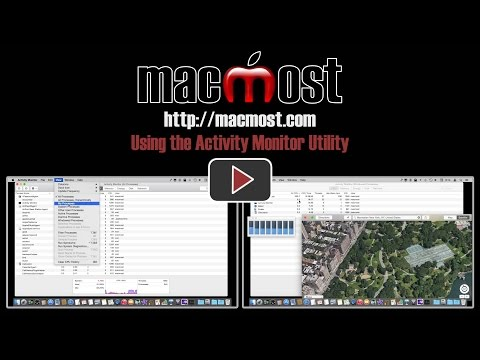 Using the Activity Monitor Utility (#1052)