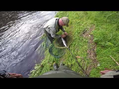 Jud With Another Nice Sea Trout At The Dub Canonbie Esk