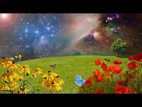 New Age Music: Relaxing Music; ReikiMusic; Yoga Music; Relaxation Music; Spa Music;🌅