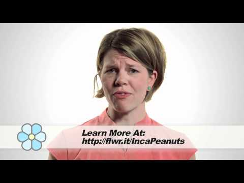 What is the Inca Peanut?