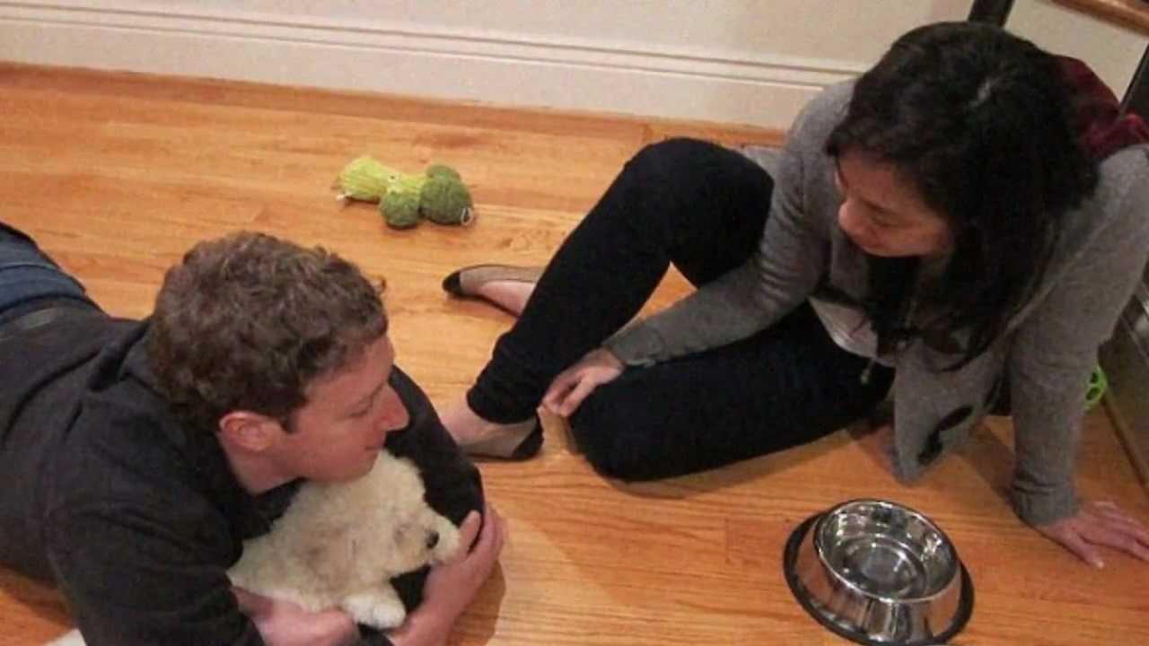 Mark Zuckerberg loses $7.2B over ad boycotts on Facebook