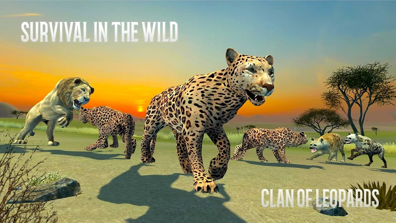 delineating the darker side of leopards are some mystery