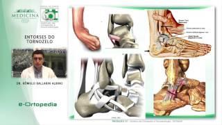 Parte na perna e inferior lesões 16 pé capítulo tornozelo da