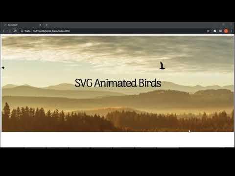 Animated Birds Html Css