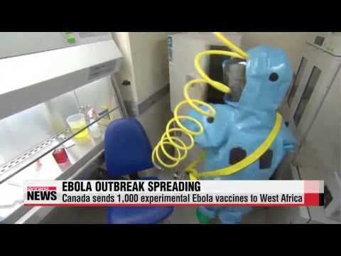 Canada Sends Experimental Ebola Vaccine To Africa As Death Toll Rises
