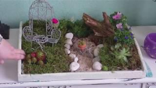 DIY - Der Garten fürs Wohnzimmer auf einem Tablett/  Fairy Garden