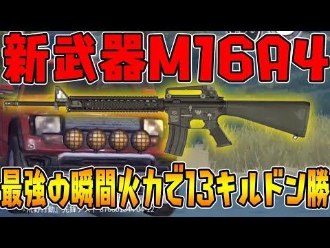 【荒野行動】最新アプデの新武器M16A4の瞬間火力がやばすぎるww3点バーストで瞬殺!初戦で13キルドン勝!【knives out実況】